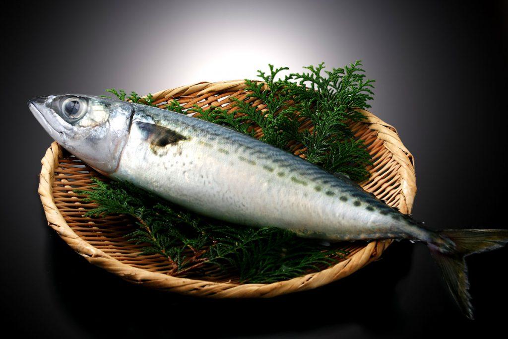 鯖(さば)は、魚へんに青